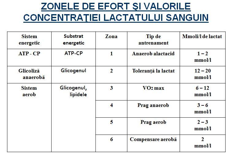 zonele de efort si valorile concentratiei lactatului sanguin