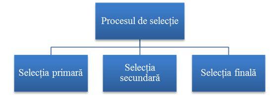Etapele procesului de selectie